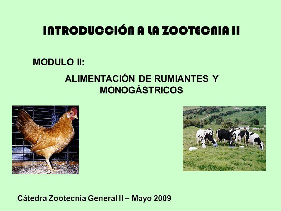 INTRODUCCIÓN A LA ZOOTECNIA II MODULO II: ALIMENTACIÓN DE RUMIANTES Y MONOGÁSTRICOS Cátedra Zootecnia General II – Mayo 2009