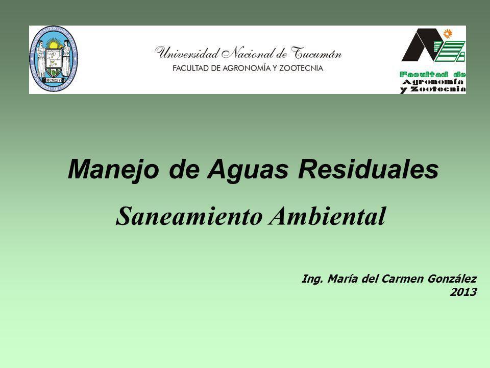 Ing. María del Carmen González 2013 Manejo de Aguas Residuales Saneamiento Ambiental