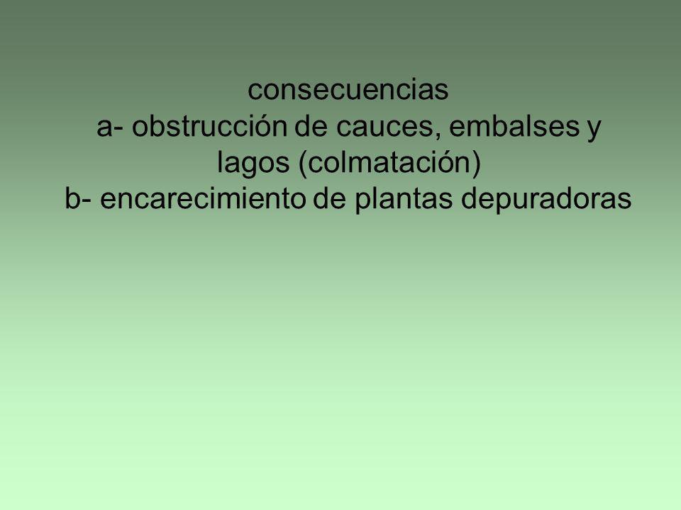 consecuencias a- obstrucción de cauces, embalses y lagos (colmatación) b- encarecimiento de plantas depuradoras