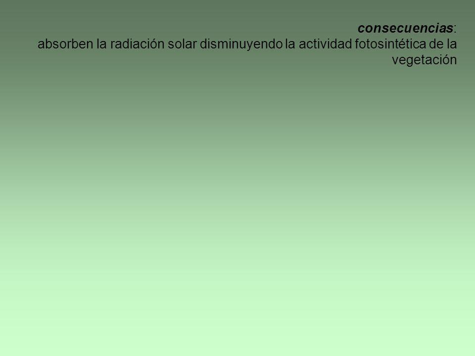 consecuencias: absorben la radiación solar disminuyendo la actividad fotosintética de la vegetación