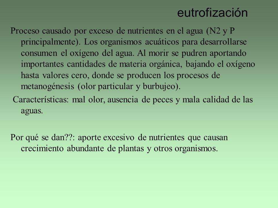 eutrofización Proceso causado por exceso de nutrientes en el agua (N2 y P principalmente). Los organismos acuáticos para desarrollarse consumen el oxí