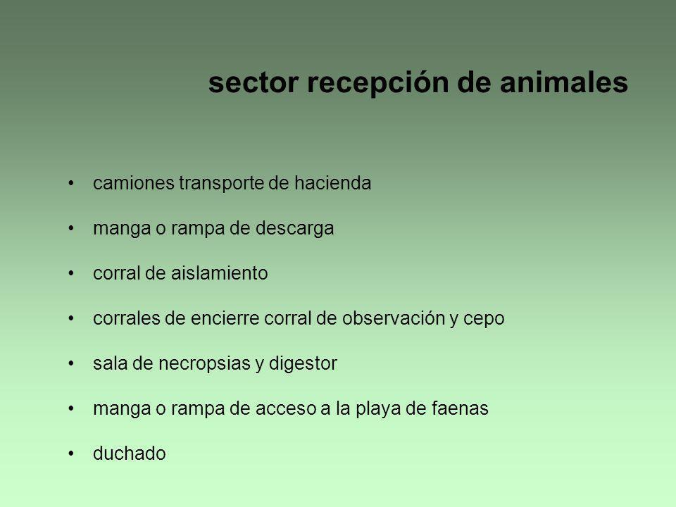 sector recepción de animales camiones transporte de hacienda manga o rampa de descarga corral de aislamiento corrales de encierre corral de observació