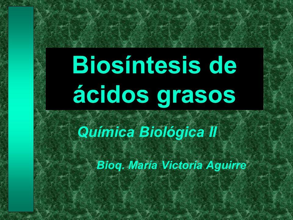 Objetivos Conocer las etapas de la sìntesis de los ácidos grasos Distinguir los componentes del complejo de la acido graso sintasa Conocer los mecanismos de elongación y desaturación de los ácidos grasos Comparar las similitudes y diferencias entre la biosíntesis y la beta-oxidación de los ácidos grasos