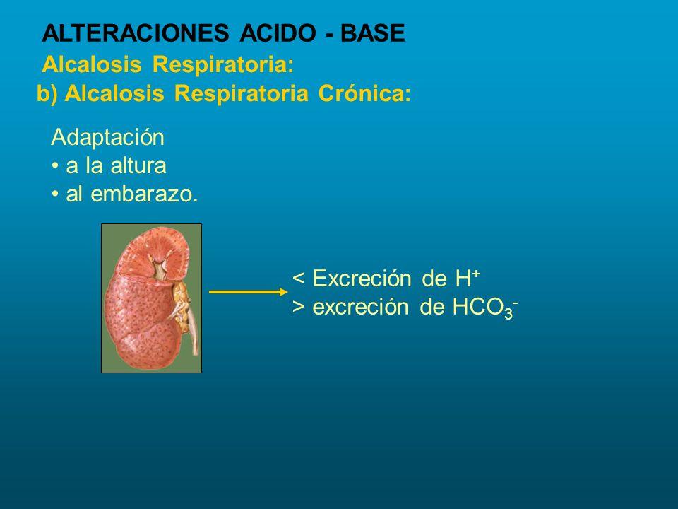< Excreción de H + > excreción de HCO 3 - Adaptación a la altura al embarazo. Alcalosis Respiratoria: b) Alcalosis Respiratoria Crónica: ALTERACIONES
