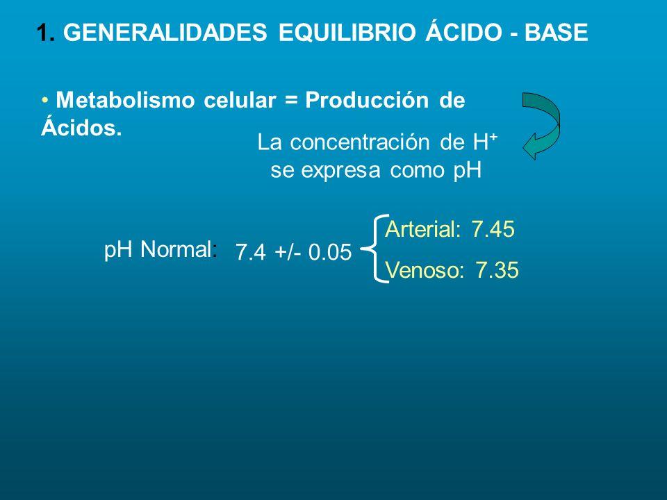 < Excreción de H + > excreción de HCO 3 - Adaptación a la altura al embarazo.