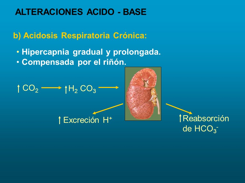 Hipercapnia gradual y prolongada. Compensada por el riñón. CO 2 H 2 CO 3 Excreción H + Reabsorción de HCO 3 - b) Acidosis Respiratoria Crónica: ALTERA