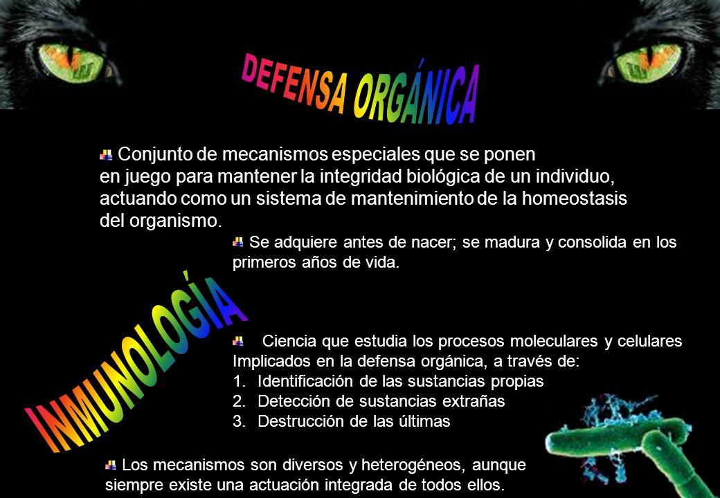 Conjunto de mecanismos especiales que se ponen en juego para mantener la integridad biológica de un individuo, actuando como un sistema de mantenimien