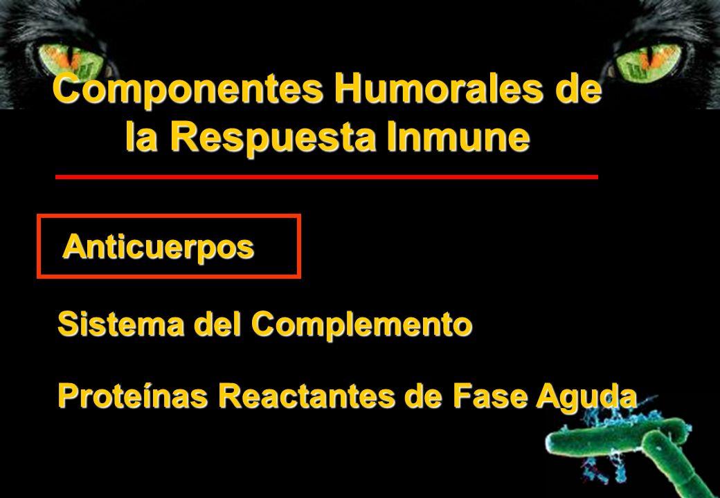 Componentes Humorales de la Respuesta Inmune Sistema del Complemento Anticuerpos Proteínas Reactantes de Fase Aguda