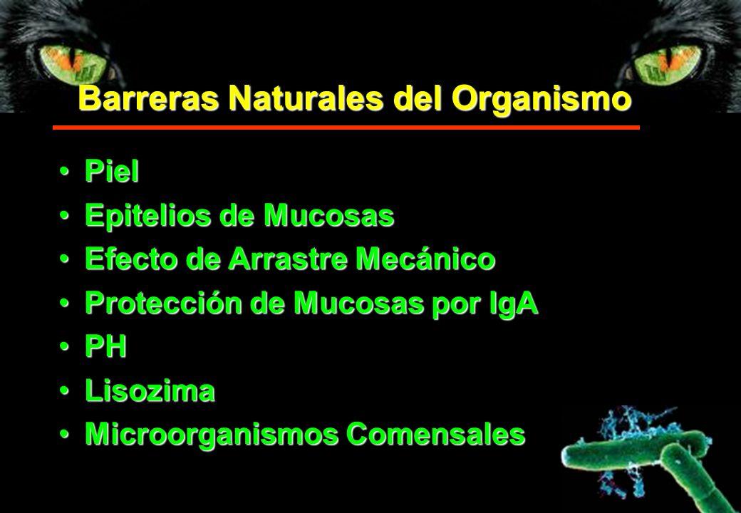 Barreras Naturales del Organismo PielPiel Epitelios de MucosasEpitelios de Mucosas Efecto de Arrastre MecánicoEfecto de Arrastre Mecánico Protección d