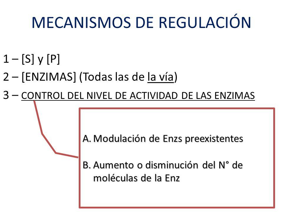 1 – [S] y [P] 2 – [ENZIMAS] (Todas las de la vía) 3 – CONTROL DEL NIVEL DE ACTIVIDAD DE LAS ENZIMAS A.Modulación de Enzs preexistentes B.Aumento o dis