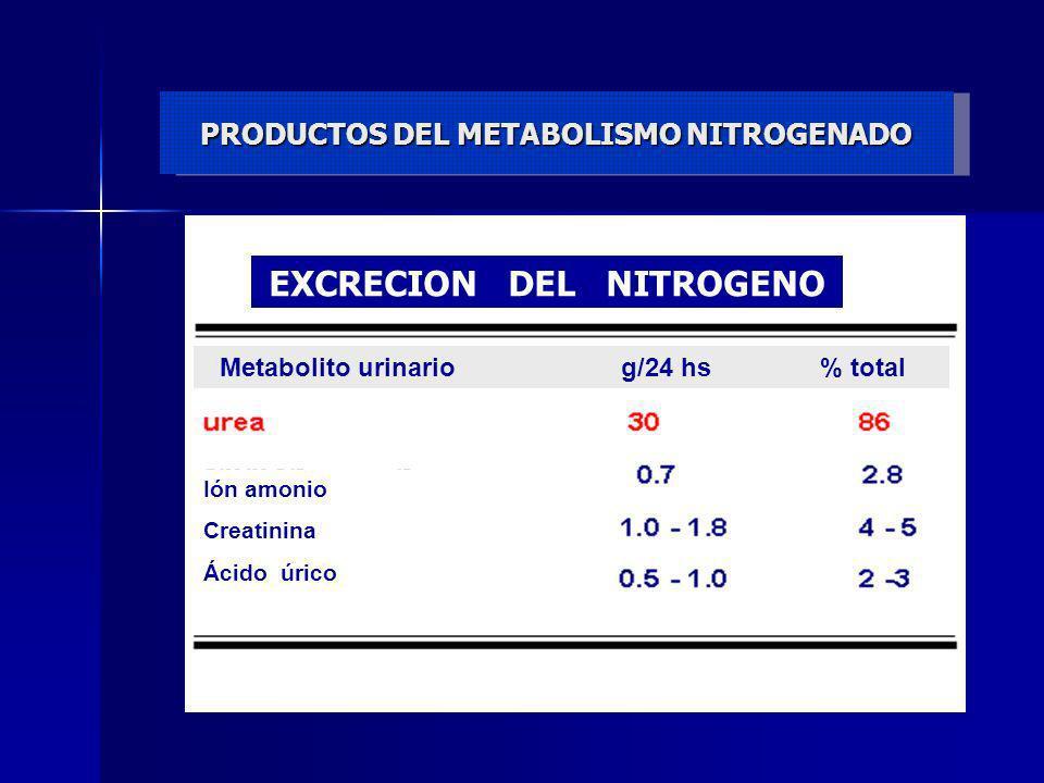 EXACRECION DEL NITROGENO PRODUCTOS DEL METABOLISMO NITROGENADO EXCRECION DEL NITROGENO Metabolito urinario g/24 hs % total Ión amonio Creatinina Ácido