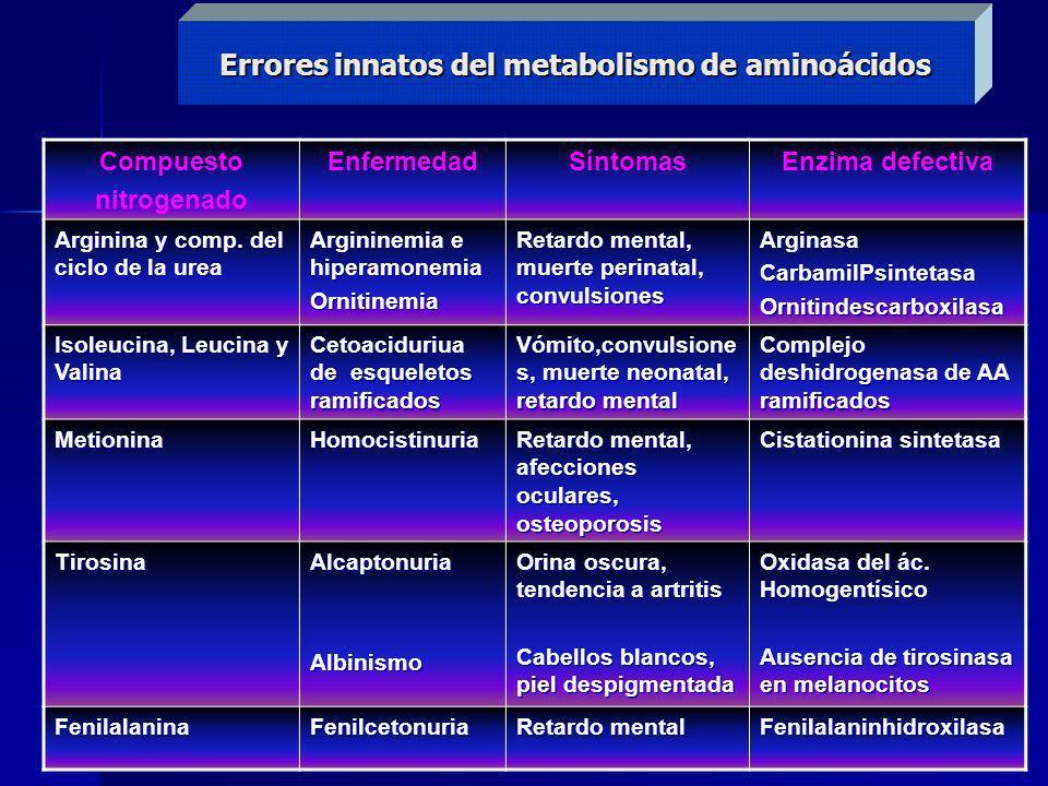 Errores innatos del metabolismo de aminoácidos Compuesto nitrogenado EnfermedadSíntomasEnzima defectiva Arginina y comp. del ciclo de la urea Arginine
