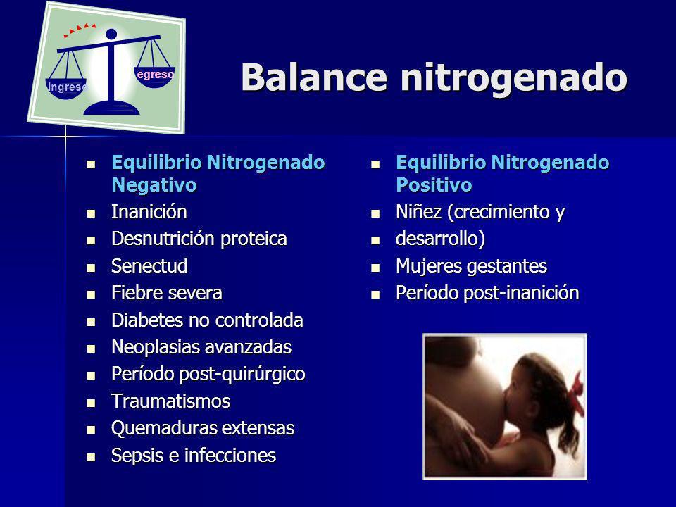 Balance nitrogenado Balance nitrogenado Equilibrio Nitrogenado Negativo Equilibrio Nitrogenado Negativo Inanición Inanición Desnutrición proteica Desn