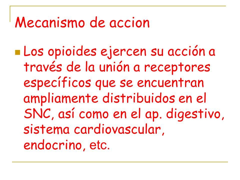 Mecanismo de accion Los opioides ejercen su acción a través de la unión a receptores específicos que se encuentran ampliamente distribuidos en el SNC,