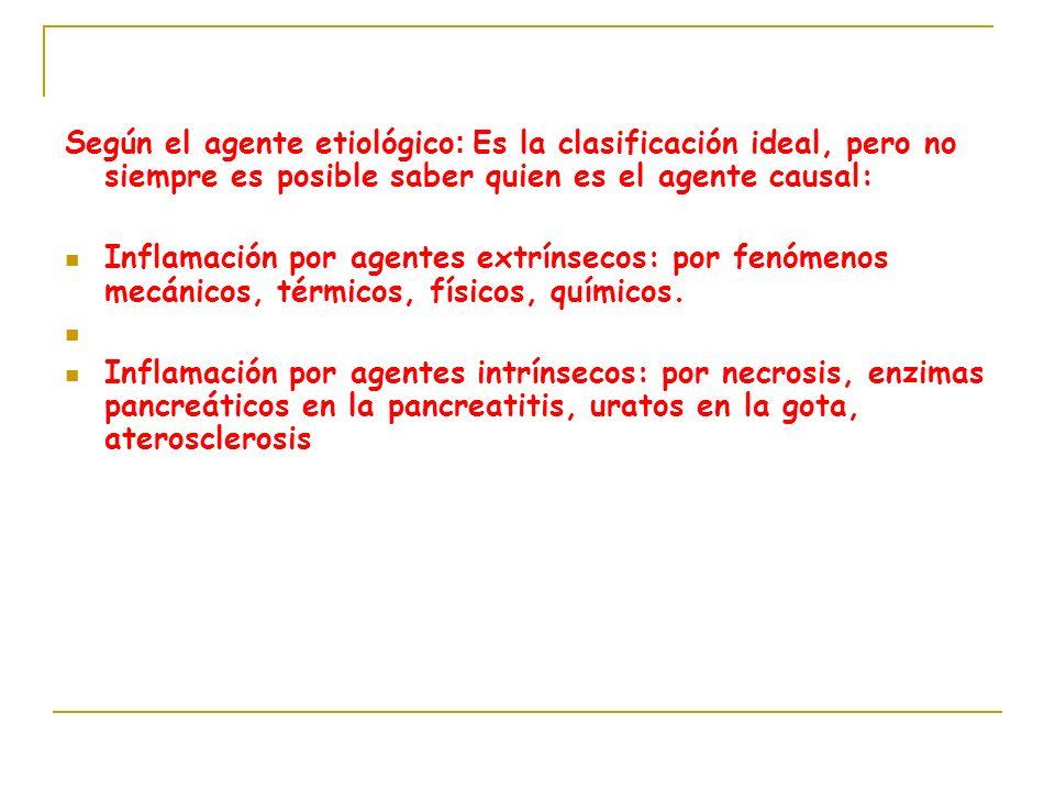 Según el agente etiológico : Es la clasificación ideal, pero no siempre es posible saber quien es el agente causal: Inflamación por agentes extrínseco