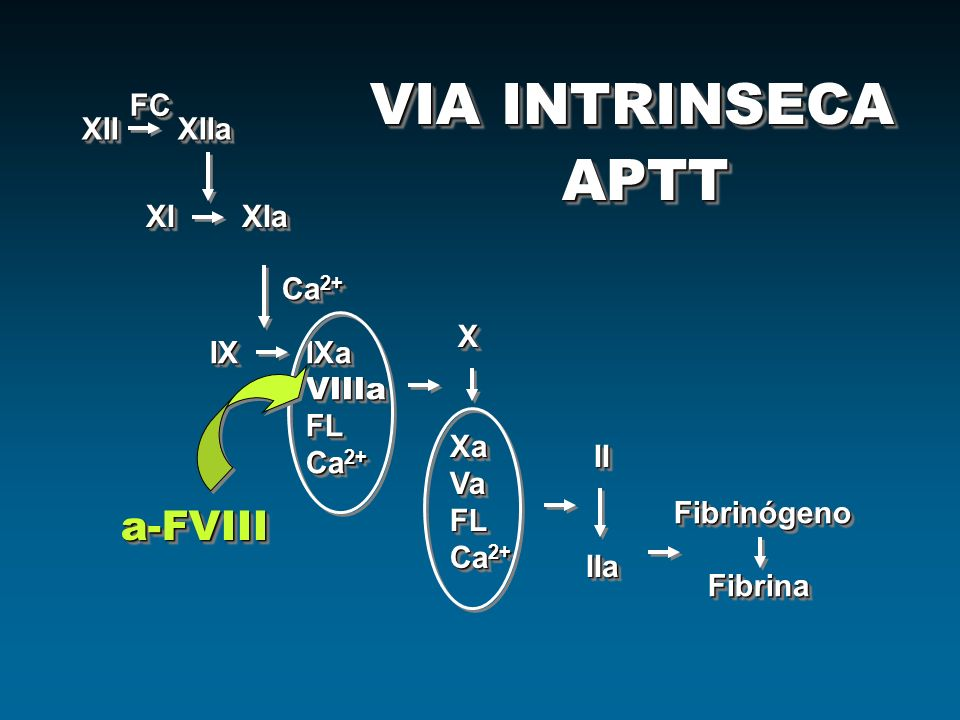 XIIXIIa XIXIa IXIXa VIIIaFL Ca 2+ IXIXa VIIIaFL Ca 2+ FCFC XXaVaFL XXaVaFL II IIIIa IIa Fibrinógeno Fibrina FibrinaFibrinógeno a-FVIIIa-FVIII VIA INTR