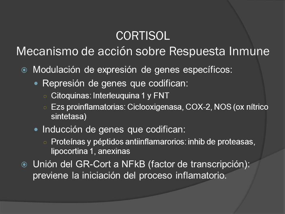 CORTISOL Mecanismo de acción sobre Respuesta Inmune Modulación de expresión de genes específicos: Represión de genes que codifican: Citoquinas: Interl
