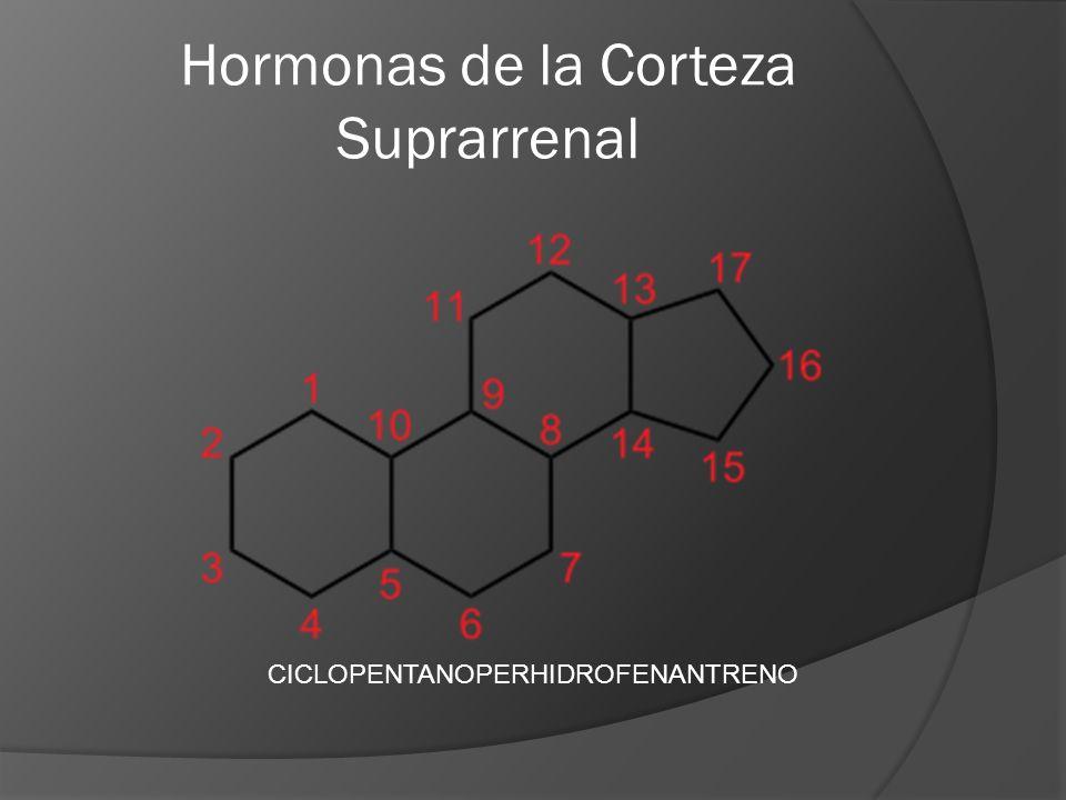 Hormonas de la Corteza Suprarrenal CICLOPENTANOPERHIDROFENANTRENO
