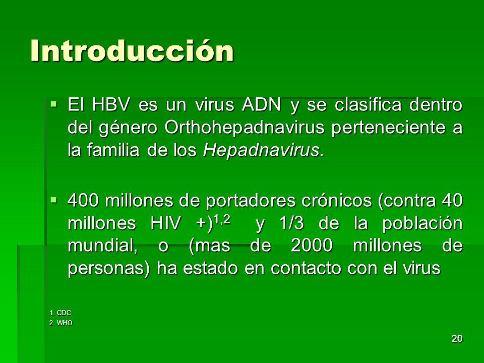 20 Introducción El HBV es un virus ADN y se clasifica dentro del género Orthohepadnavirus perteneciente a la familia de los Hepadnavirus. El HBV es un