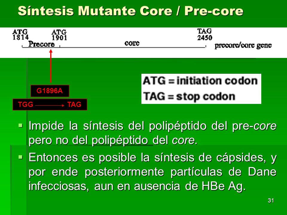 31 Síntesis Mutante Core / Pre-core Impide la síntesis del polipéptido del pre-core pero no del polipéptido del core. Impide la síntesis del polipépti
