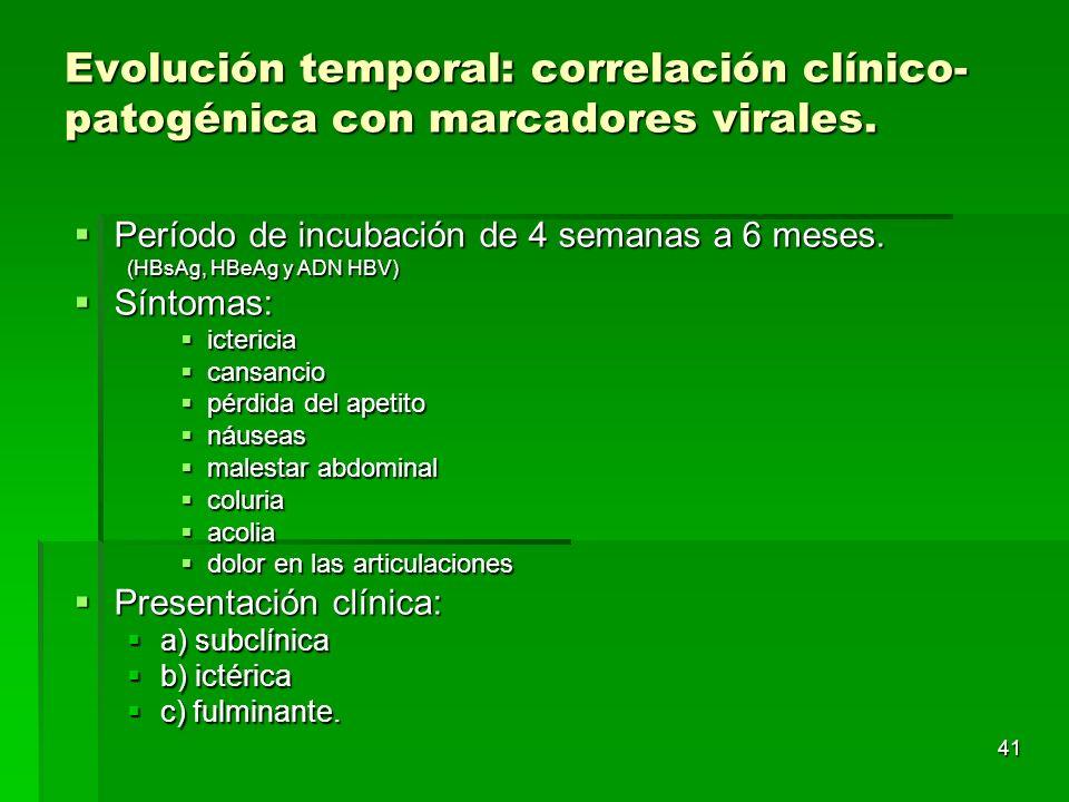 41 Evolución temporal: correlación clínico- patogénica con marcadores virales. Período de incubación de 4 semanas a 6 meses. Período de incubación de