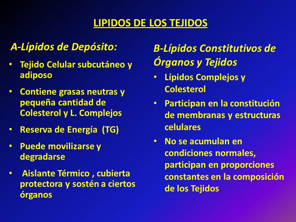 LIPIDOS DE LOS TEJIDOS A-Lípidos de Depósito: Tejido Celular subcutáneo y adiposo Contiene grasas neutras y pequeña cantidad de Colesterol y L. Comple