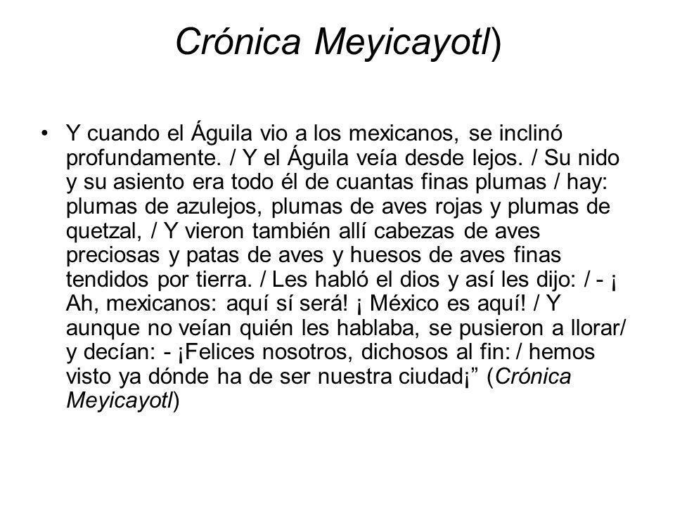Crónica Meyicayotl) Y cuando el Águila vio a los mexicanos, se inclinó profundamente. / Y el Águila veía desde lejos. / Su nido y su asiento era todo