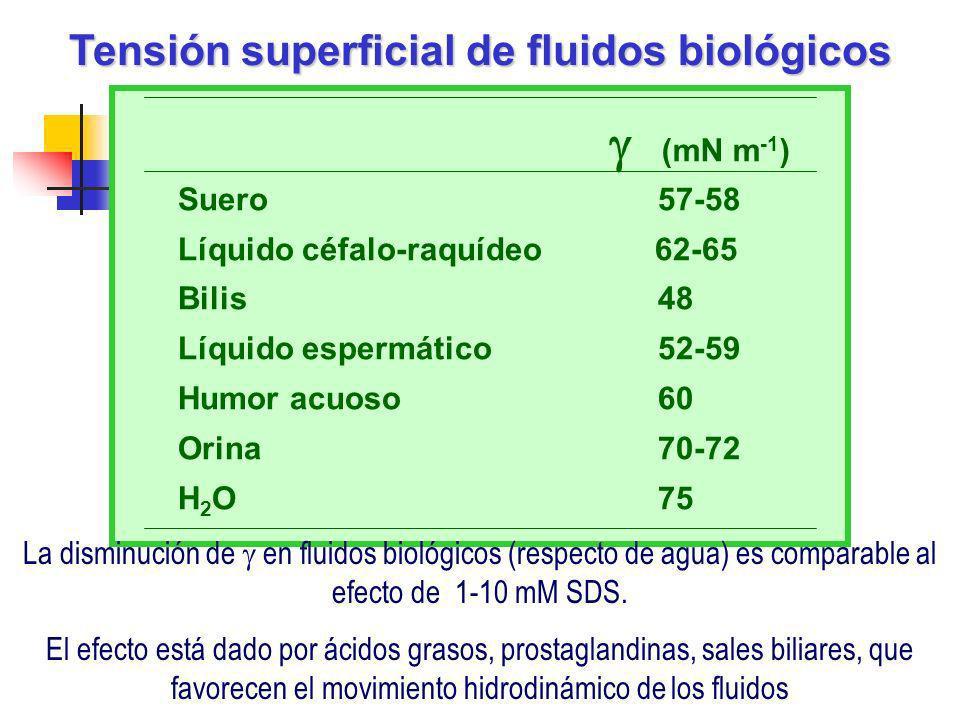 Suero57-58 Líquido céfalo-raquídeo 62-65 Bilis48 Líquido espermático 52-59 Humor acuoso60 Orina 70-72 H 2 O 75 (mN m -1 ) Tensión superficial de fluid