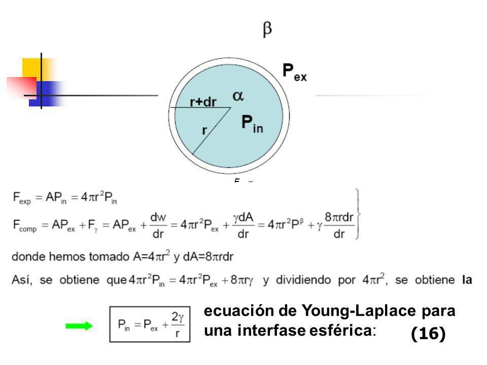 ecuación de Young-Laplace para una interfase esférica: (16)