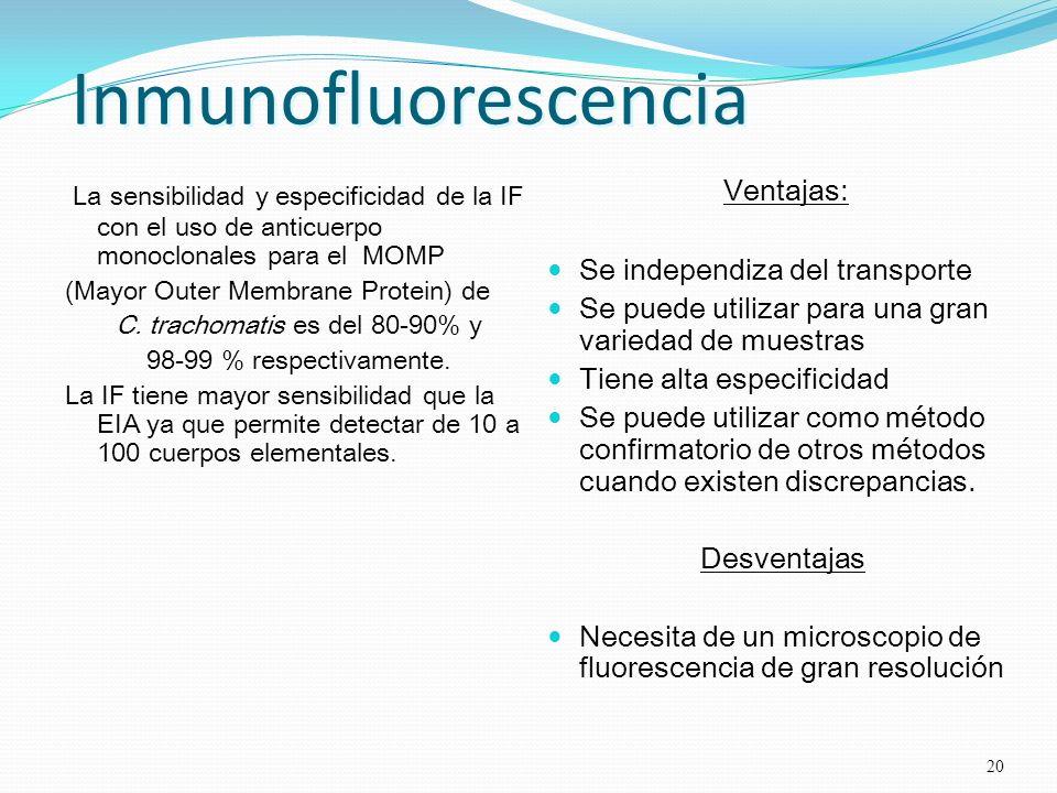 Inmunofluorescencia La sensibilidad y especificidad de la IF con el uso de anticuerpo monoclonales para el MOMP (Mayor Outer Membrane Protein) de C. t