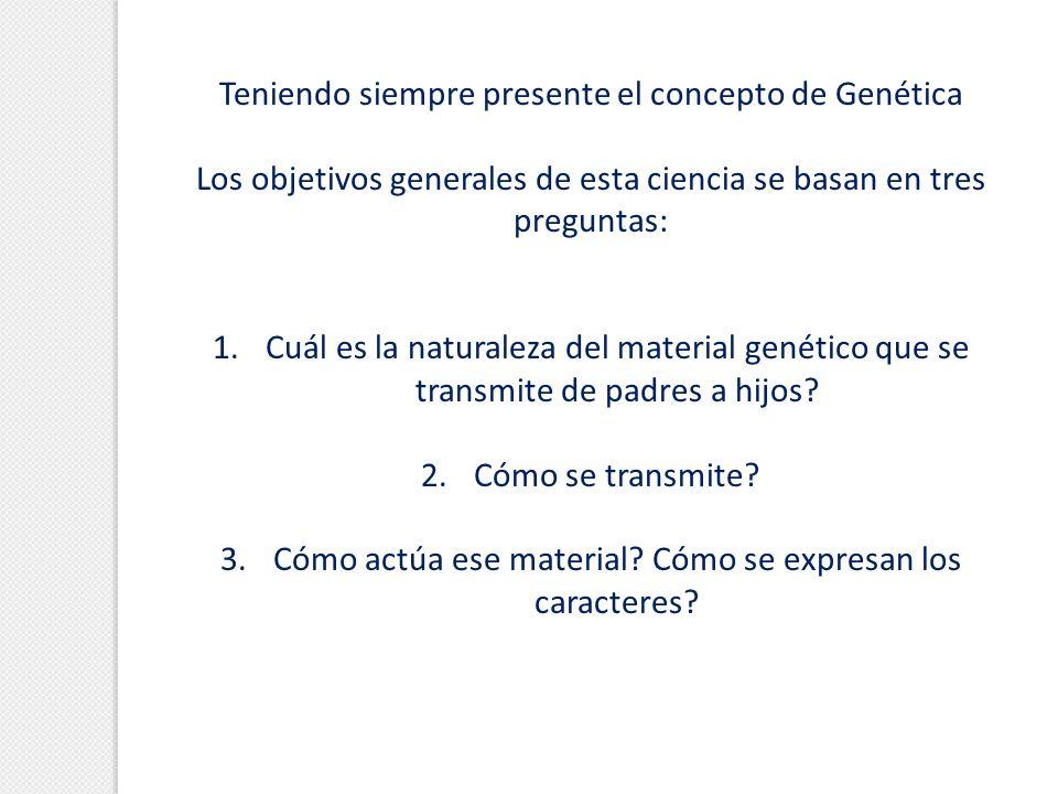 Teniendo siempre presente el concepto de Genética Los objetivos generales de esta ciencia se basan en tres preguntas: 1. 1.Cuál es la naturaleza del m