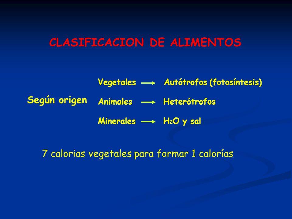 CLASIFICACION DE ALIMENTOS Según origen Vegetales Autótrofos (fotosíntesis) Animales Heterótrofos Minerales H 2 O y sal 7 calorias vegetales para form