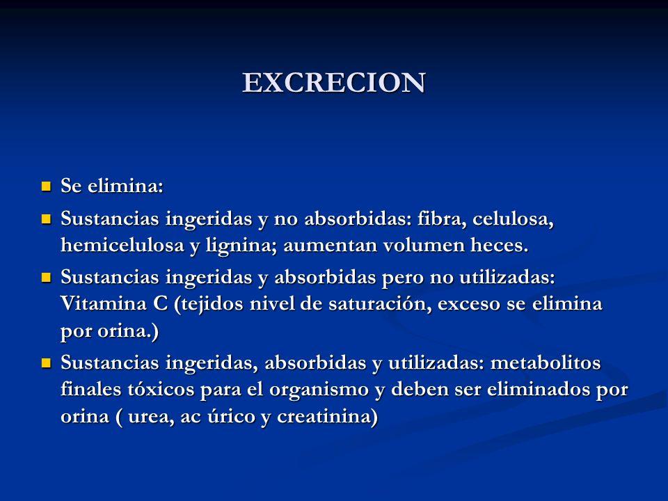 EXCRECION Se elimina: Se elimina: Sustancias ingeridas y no absorbidas: fibra, celulosa, hemicelulosa y lignina; aumentan volumen heces. Sustancias in