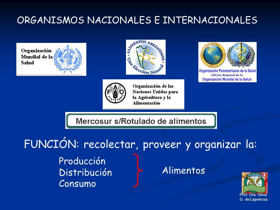 ORGANISMOS NACIONALES E INTERNACIONALES FUNCIÓN: recolectar, proveer y organizar la: Producción Distribución Consumo Alimentos Catedra Prof. Dra. Silv