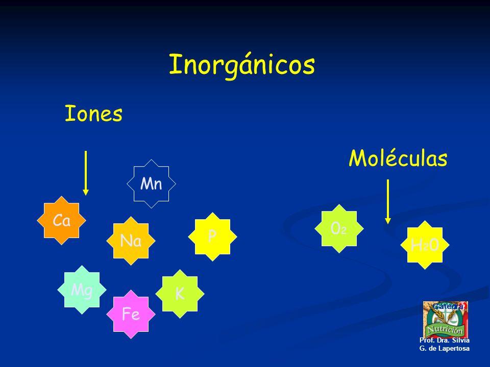Inorgánicos Moléculas Iones Na K Ca P Mn Fe Mg H20H20 0202 Catedra Prof. Dra. Silvia G. de Lapertosa