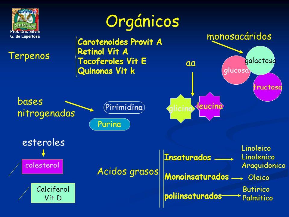 Orgánicos Acidos grasos Insaturados Monoinsaturados poliinsaturados Linoleico Linolenico Araquidonico Oleico Butirico Palmitico monosacáridos glucosa