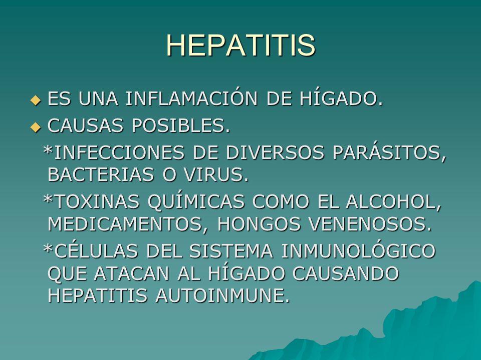 HEPATITIS ES UNA INFLAMACIÓN DE HÍGADO. ES UNA INFLAMACIÓN DE HÍGADO. CAUSAS POSIBLES. CAUSAS POSIBLES. *INFECCIONES DE DIVERSOS PARÁSITOS, BACTERIAS