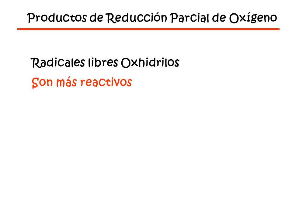 Productos de Reducción Parcial de Oxígeno Radicales libres Oxhidrilos Son más reactivos