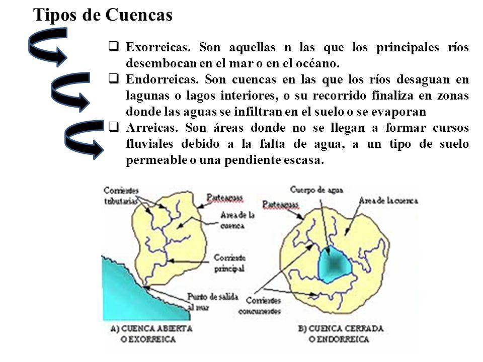 Tipos de Cuencas Exorreicas. Son aquellas n las que los principales ríos desembocan en el mar o en el océano. Endorreicas. Son cuencas en las que los