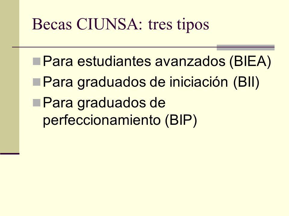 Becas CIUNSA: tres tipos Para estudiantes avanzados (BIEA) Para graduados de iniciación (BII) Para graduados de perfeccionamiento (BIP)