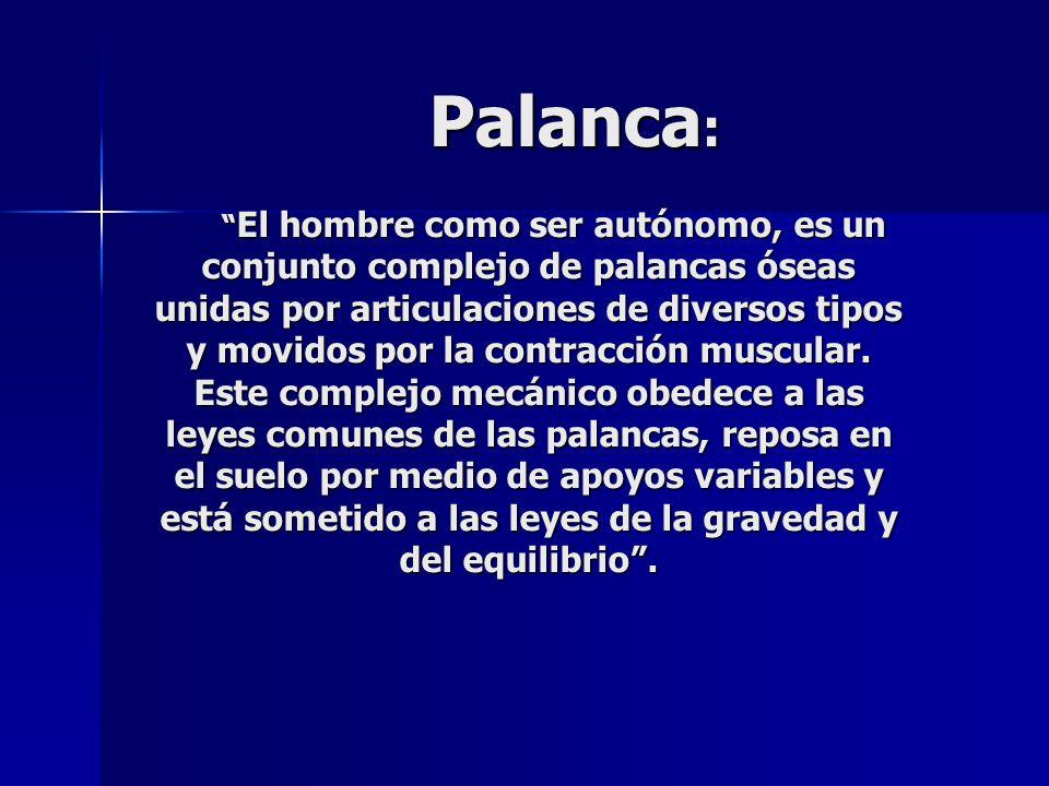 Palanca : El hombre como ser autónomo, es un conjunto complejo de palancas óseas unidas por articulaciones de diversos tipos y movidos por la contracc