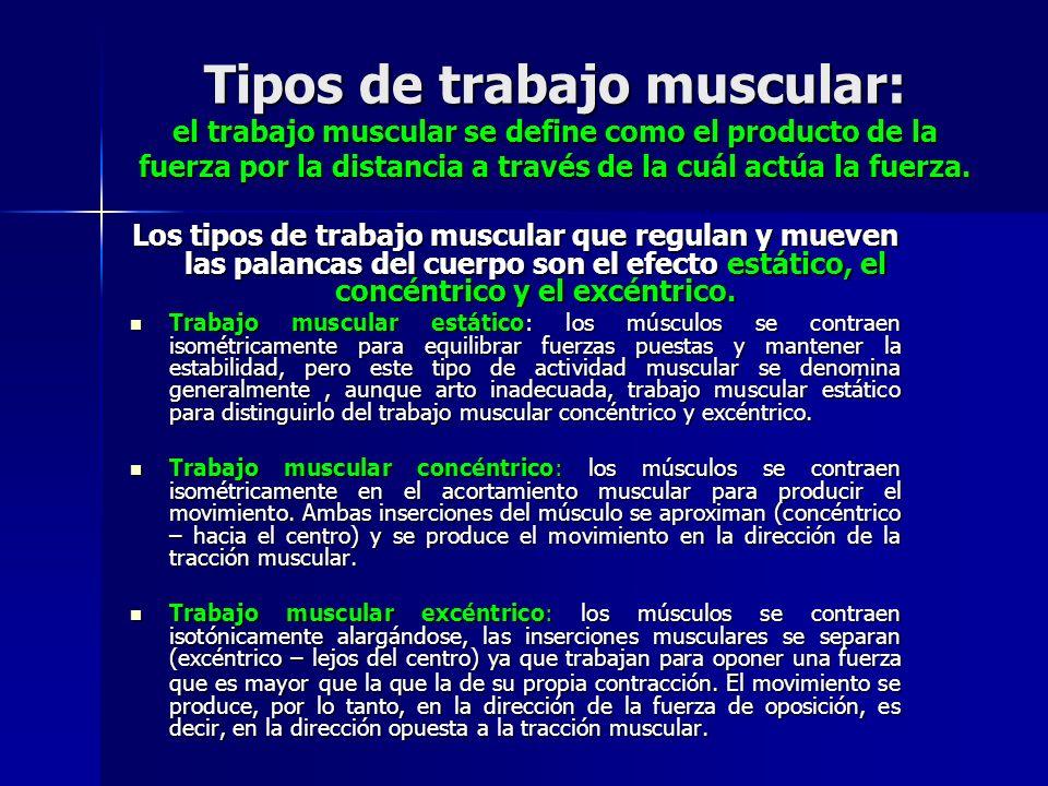 Tipos de trabajo muscular: el trabajo muscular se define como el producto de la fuerza por la distancia a través de la cuál actúa la fuerza. Los tipos