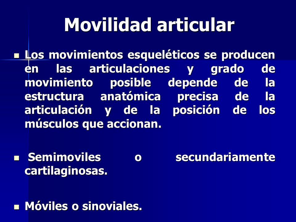 Movilidad articular Los movimientos esqueléticos se producen en las articulaciones y grado de movimiento posible depende de la estructura anatómica pr