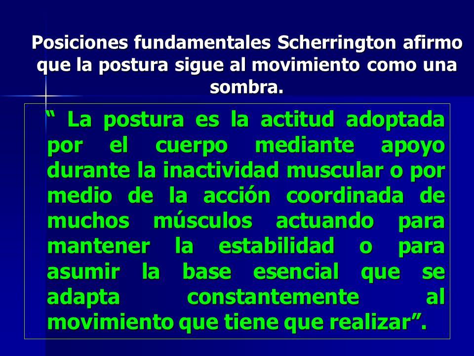 Posiciones fundamentales Scherrington afirmo que la postura sigue al movimiento como una sombra. La postura es la actitud adoptada por el cuerpo media