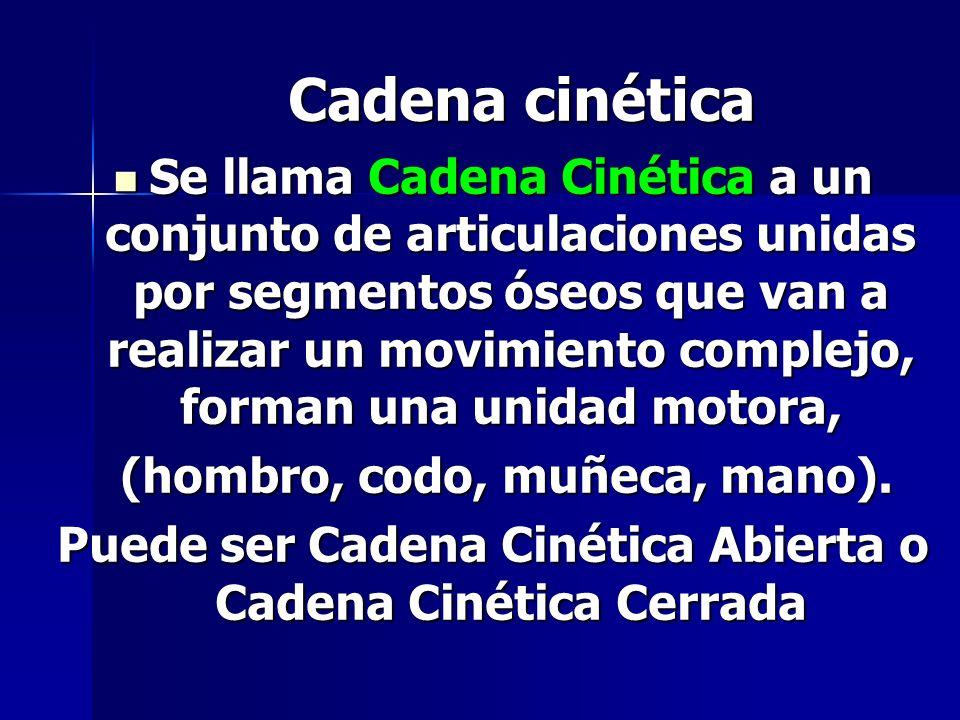 Cadena cinética Se llama Cadena Cinética a un conjunto de articulaciones unidas por segmentos óseos que van a realizar un movimiento complejo, forman