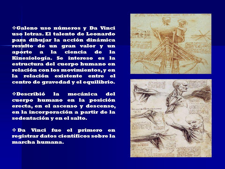 Galeno uso números y Da Vinci uso letras. El talento de Leonardo para dibujar la acción dinámica resulto de un gran valor y un aporte a la ciencia de