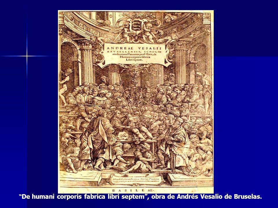 De humani corporis fabrica libri septem, obra de Andrés Vesalio de Bruselas.