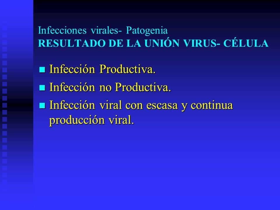 Infecciones virales- Patogenia RESULTADO DE LA UNIÓN VIRUS- CÉLULA Infección Productiva. Infección Productiva. Infección no Productiva. Infección no P