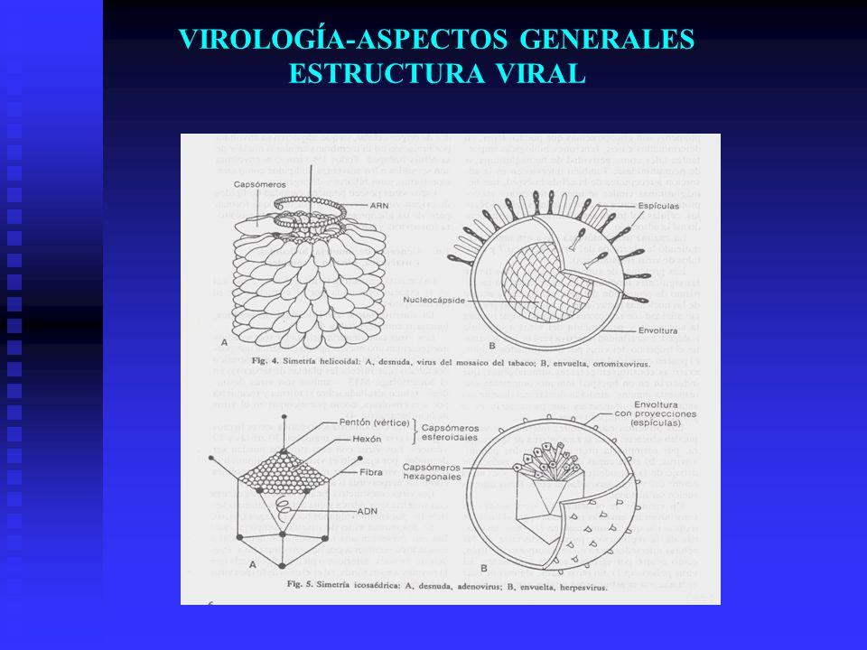 VIROLOGÍA-ASPECTOS GENERALES ESTRUCTURA VIRAL