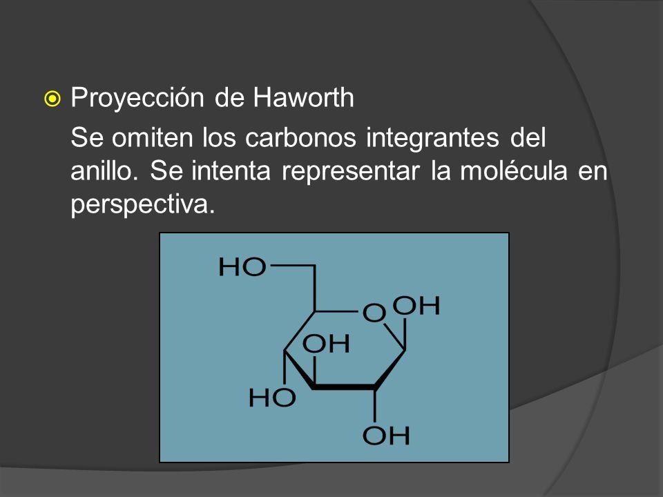 Proyección de Haworth Se omiten los carbonos integrantes del anillo. Se intenta representar la molécula en perspectiva.